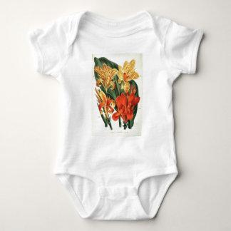 Canna Hybrids - Botanical Art T-shirt