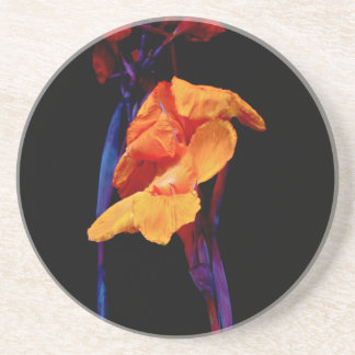 Canna Lilies on Black With Blue Coasters