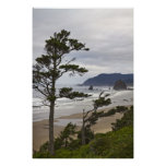 Cannon Beach from Tolovana in Oregon Pacific Ocean Poster