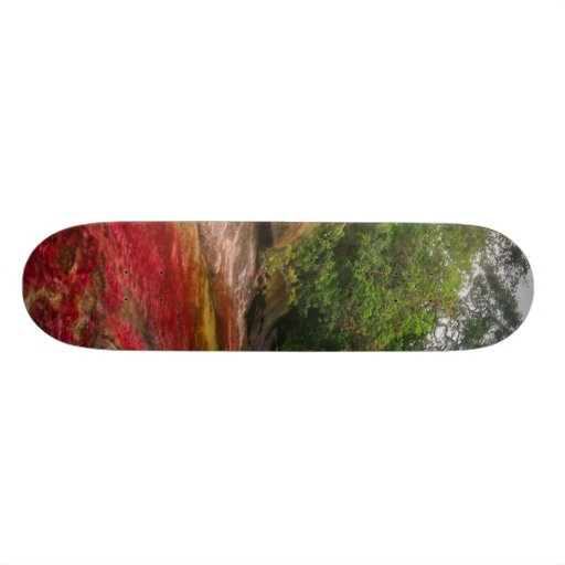 CANO CRISTALES 1 SKATE DECK