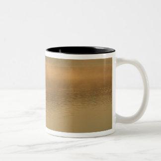 canoeist, Algonguin Park, Ontario, Canada. Two-Tone Coffee Mug