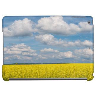 Canola Field & Clouds
