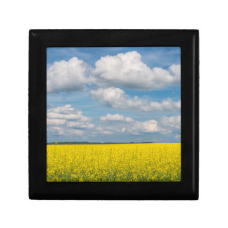 Canola Field & Clouds Gift Box