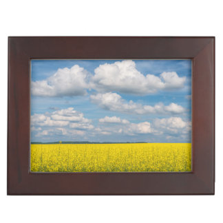 Canola Field & Clouds Keepsake Box