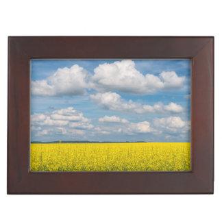 Canola Field & Clouds Memory Box