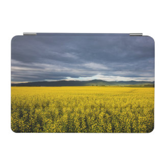 Canola field in morning light in the Flathead iPad Mini Cover