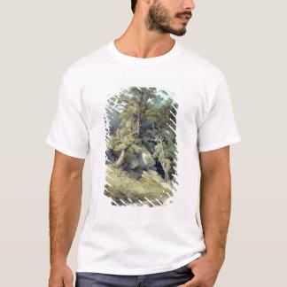 Canonteign, Devon T-Shirt