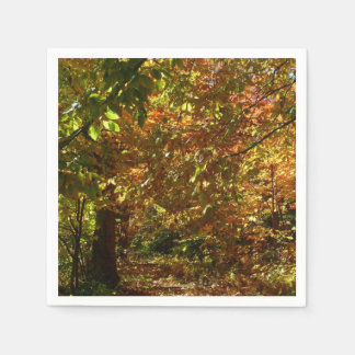 Canopy of Fall Leaves II Yellow Autumn Photography Paper Napkins