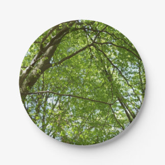 Canopy of Spring Leaves Green Nature Scene 7 Inch Paper Plate