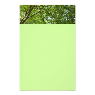 Canopy of Spring Leaves Green Nature Scene Stationery