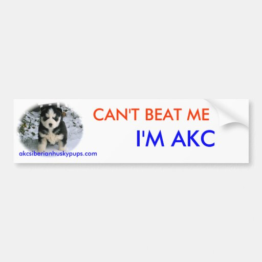 Can't Beat Me Bumper Stickers