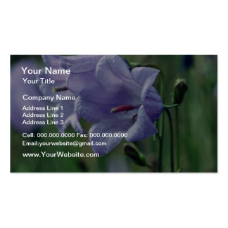 Canterberry Bells flowers Pack Of Standard Business Cards
