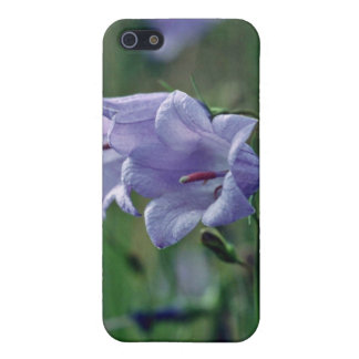 Canterberry Bells flowers Cover For iPhone 5
