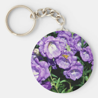Canterbury bells, hardy common biennial flower basic round button key ring
