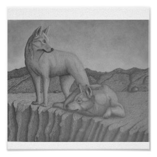 Canvas Art Print. Dingos also (warrigal) wolf-like Poster