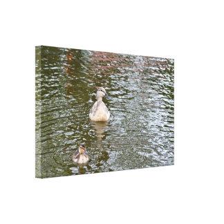 Canvas: Female Mallard Duck and Duckling Canvas Print