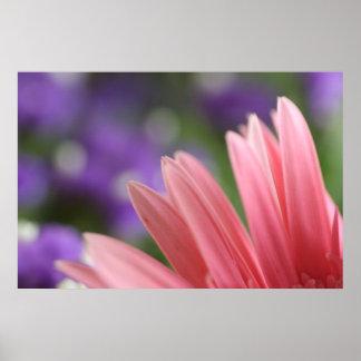 Canvas Flower Print (Daisy)