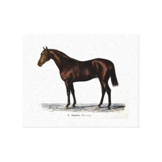 Canvas of 19th Century Horse
