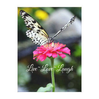Canvas/Paperkite Butterfly/Live love Laugh Gallery Wrapped Canvas