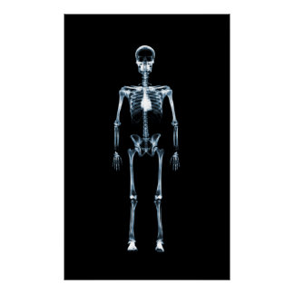 Canvas Print X-Ray Vision Blue Single Skeleton
