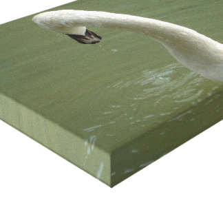 Canvas Swan