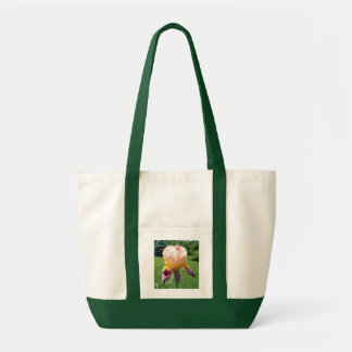 Canvas tote bag, peach and purple Iris flower