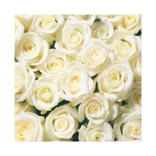Canvas Wall Art-White Roses Canvas Print