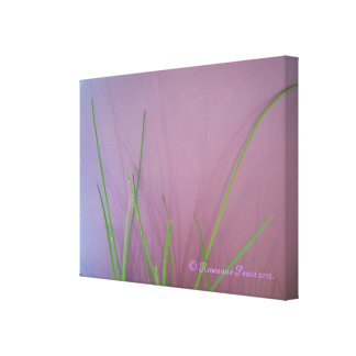 CanvasArt-GrassOnLilac.© Roseanne Pears 2012. Stretched Canvas Print