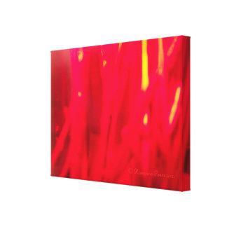 CanvasArt-RedSticksVertical.© Roseanne Pears 2012. Gallery Wrap Canvas