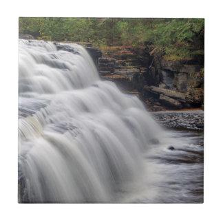 Canyon Falls On The Sturgeon River Near L'Anse Tile