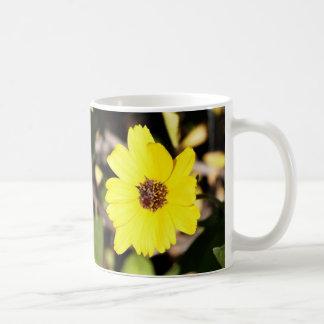 Canyon Sunflower Mug from A Gardener's Notebook