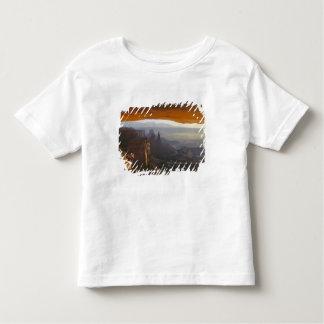CANYONLANDS NATIONAL PARK, UTAH. USA. View Toddler T-Shirt