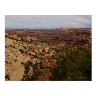 Canyonlands View from Neck Springs Trail Postcard