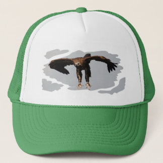 Cap Monk Vulture - Black Vulture - monk vulture