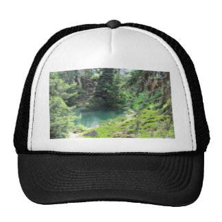 Cap Peaceful Pond Evergreen Trees Photography
