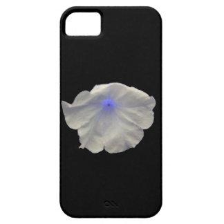 Capa de iphone 5 azul do fulgor do petúnia barely there iPhone 5 case