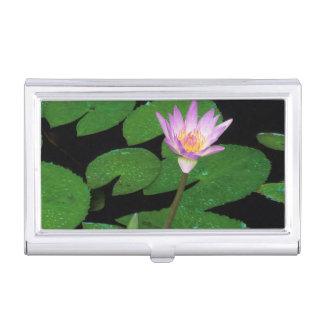 Cape Blue Water Lily (Nymphaea Capensis) Business Card Holder