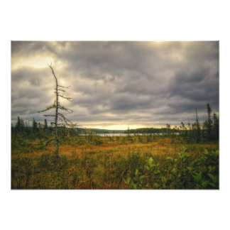 Cape Breton Island Marsh Nova Scotia Canada Photo Print