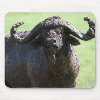Cape Buffalo Covered In Mud, Ngorongoro Mouse Pad