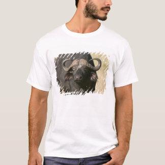 Cape Buffalo (Syncerus caffer), Masai Mara T-Shirt