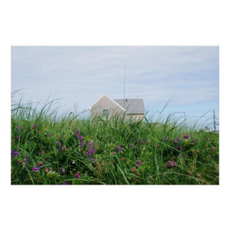 Cape Cod Beach House Poster