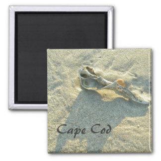 Cape Cod Massachusetts - Shell Surf Fridge Magnet