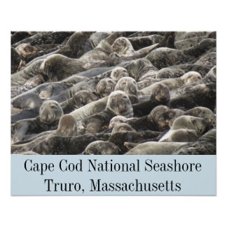 Cape Cod National Seashore- Truro Poster