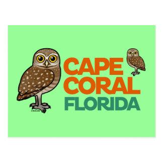 Cape Coral Burrowing Owls Postcard