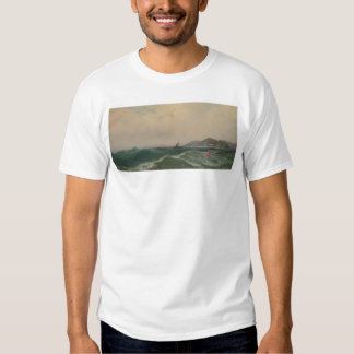 Cape Disappointment (1248) T-shirt