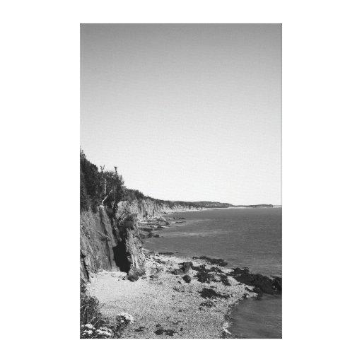 Cape Enrage Coastline Gallery Wrapped Canvas