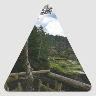 Cape Flattery Olympic Peninsula - Washington Triangle Sticker