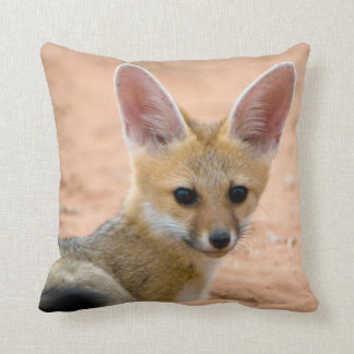 Cape Fox (Vulpes Chama) Pup Peers Inquisitively Cushion