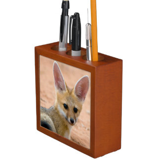 Cape Fox (Vulpes Chama) Pup Peers Inquisitively Desk Organiser