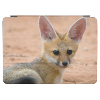 Cape Fox (Vulpes Chama) Pup Peers Inquisitively iPad Air Cover